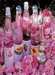 Celebrating and ceremony of making rosewater